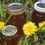 Púpavový med